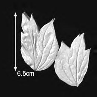 Great Impressions (SK) Leaf Veiners - Peony-Tree (R+L), Small - set of 2 6.5cm GM01P001-05