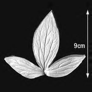 Great Impressions (SK) Leaf Veiners - Peony-Tree-Kaow, Triple 9cm GM01P001-02