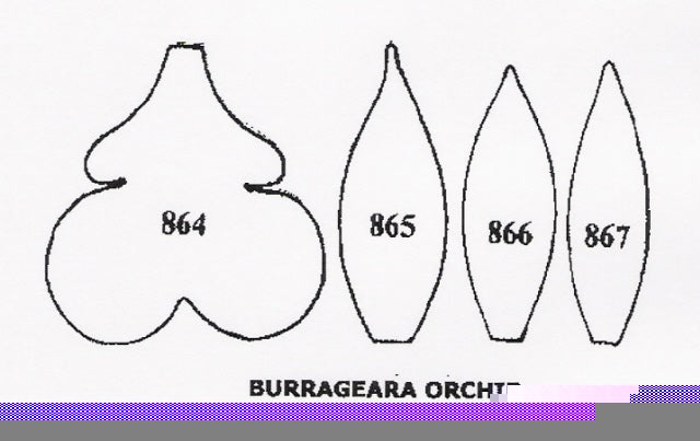 Orchid - Burrageara 864/865/866/867 (35mm) TinkerTech Two Cutters