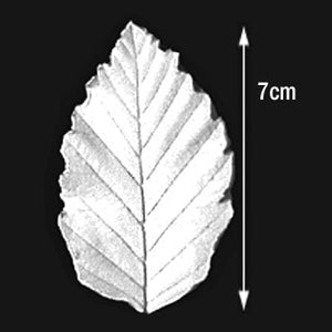 Great Impressions (SK) Leaf Veiners - Elm, Large 7cm.  GM01E001-01
