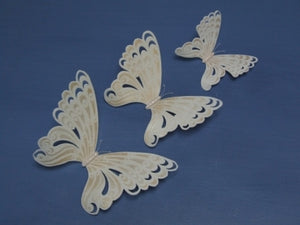 Fantasy Lace Butterfly Stencils by Stephen Benison