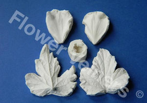 Anemone (Japanese) Petal Veiner, Leaf veiner and Centre Set by Flower Veiners (Netherlands)