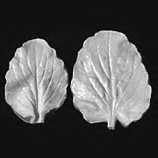 Great Impressions (SK) Leaf Veiners - Pansy, Large - set of 2 5.5cm/4.5cm GM01P002-01