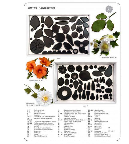 75 Leaf and Flower cutters (black) Boxed set 2 .  Jem Cutters
