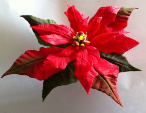 Poinsettia Tutorial