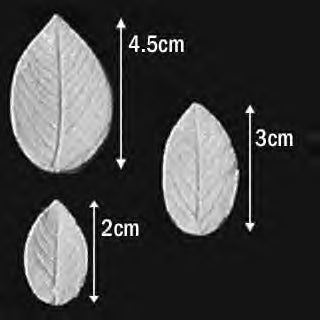 Great Impressions (SK) Leaf Veiners - Rose-Rugosa - set of 3 4.5cm/3cm/2cm GM01R003-02