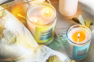 New! Scented soy wax candles!