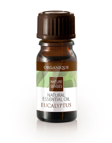 Organique natural essential oil Eucalyptus 7ml aromatherapy