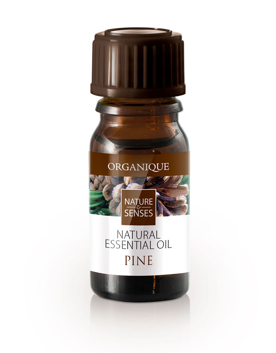 Natural Essential Oil Pine 7ml Organique cosmetics aromatherapy - Buy now