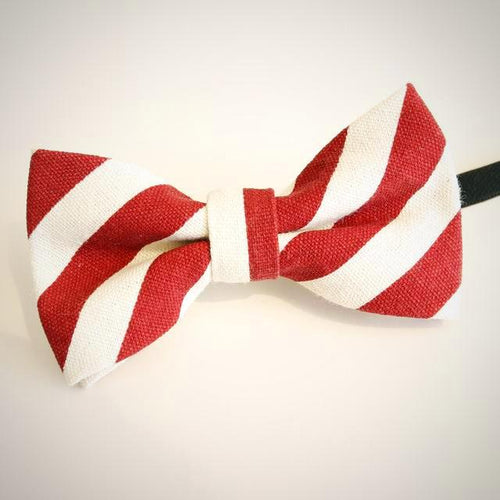 Polka Dots/Striped Cartoon Collar Bow Tie for Boys