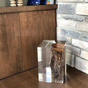 Modern acrylic side table with maple trunk inside