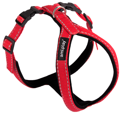 Ami Play Reflective Grand Harness