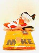 Air Jordan 6's Like Mike Gatorade Pack