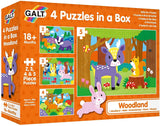 GALT - 4 Puzzles In a Box
