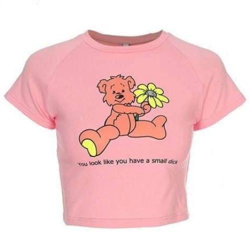 Pink You Look Like You Have A Small Dick Crop Top Teddy Bear Cropped T-Shirt Belly Shirt Savage Witty Feminist Abdl Little Space Kink Fetish by DDLG Playground