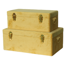 Load image into Gallery viewer, Storage case set Luxe velvet - Mustard and gold