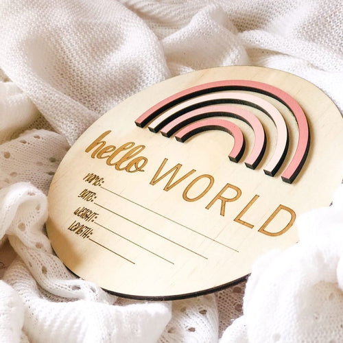 Baby Hello World announcement disc  - Rainbow Pretty Pinks