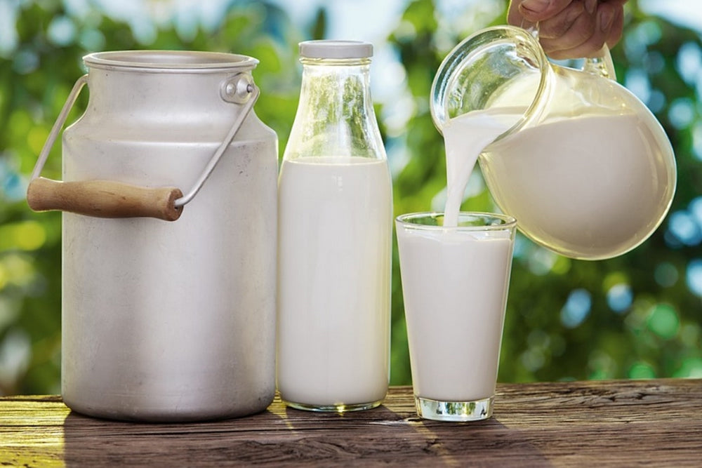 Benefits of Raw Organic Milk