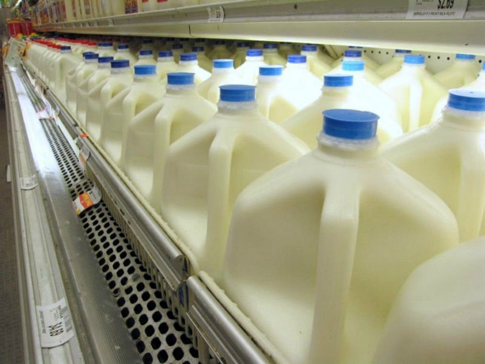 Health Risks of Pasteurized Milk