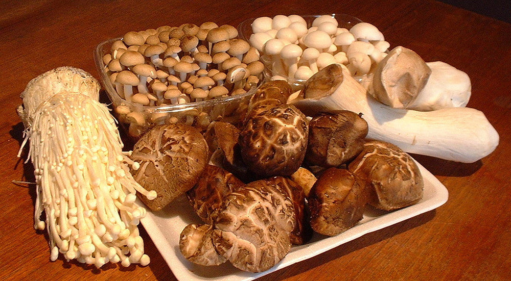How do we access the most benefits from medicinal mushrooms ?