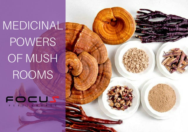 The Incredible Medicinal Powers of Mushrooms