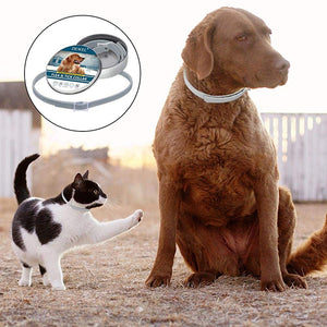 Flea and Tick Collar For Dog&Cat