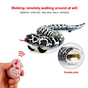RC PRANK SNAKE TOY