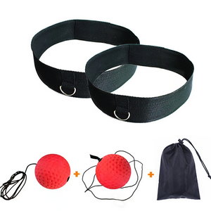 Boxing Fight Ball Reflex