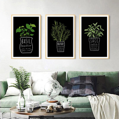 Aromatic Herbs Paintings