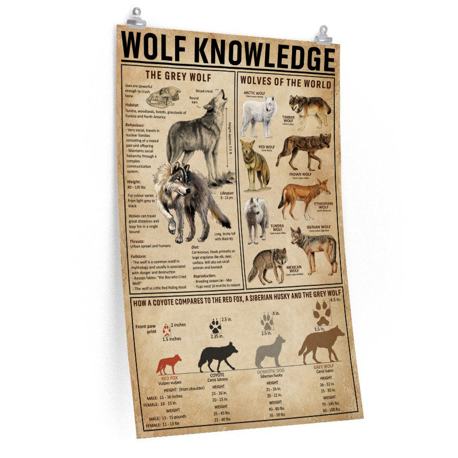 Wolf Knowledge - Poster