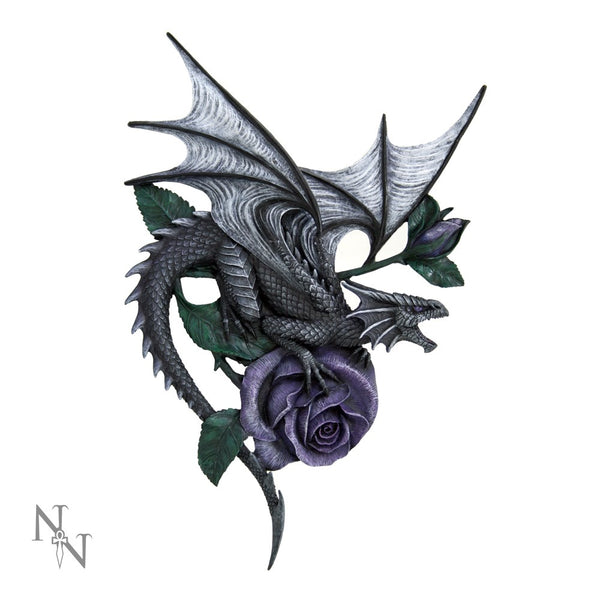Dragon Beauty Wall Plaque - Anne Stokes (AW82)