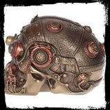 Cranial Optic Enhancer Skull Trinket Box - Steampunk (AW345)