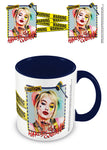 Birds of Prey (Warning) Mug