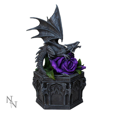 Dragon Beauty Box - Anne Stokes (AW83)