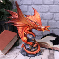 Adult Fire Dragon Anne Stokes