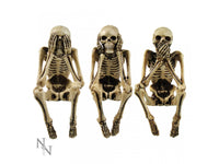 Three Wise Skeletons