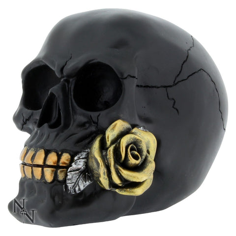 Black Rose from the Dead Skull (AW673)