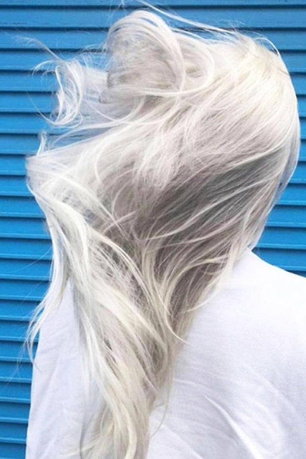 Silver Blonde with Plex Bleach | Maintain Bundle