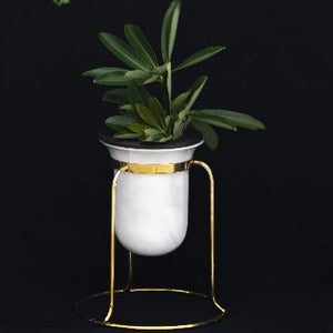 Birbal Planter- Tabletop