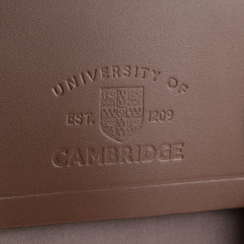 University of Cambridge Portrait Backpack in Leather - Vintage