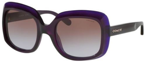 Coach Purple Frames Brown Lens Sunglasses (HC8194 524968) - Ships Same/Next Day!