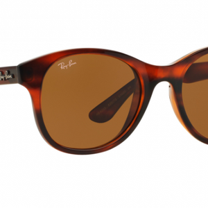 Ray-Ban Havana Brown Gradient Lens Sunglasses  (RB4203 820/73 51mm) - Ships Same/Next Day!
