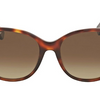 Gucci Polarized Dark Havana Cateye Sunglasses (GG0097S 006) - Ships Same/Next Day!