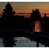 6 Pack: Solar Flickering Flame Stake Lights (Smaller Qty Packs Available) - Ships Next Day!