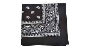 Mechaly Everyday Wear 100% Cotton 22 x 22 - 15 Pack Bandana - Paisley and Solid Colors