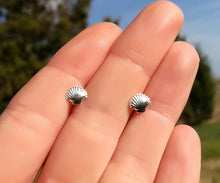 Seashell Sterling Silver Stud Earrings