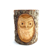 Small Wooden Owl in Tree