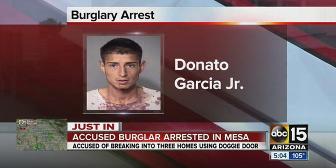 Doggy Door Burglar in Mesa, Arizona Gets Busted by Ring