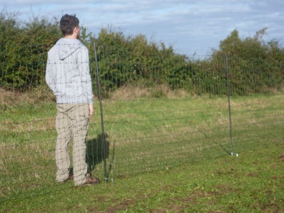 The tallest, most secure electric chicken net available