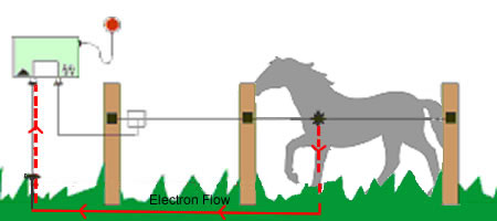 Electric Fencing Kits For Horses Mains Battery Powered Range Of Posts Tape